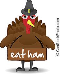 malheureux, thanksgiving turquie, oiseau, stands, seul