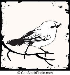 maličký, ptáček, ilustrace