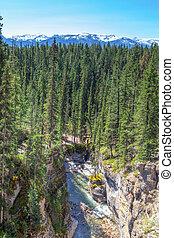 Maligne Canyon in Jasper National Park, Alberta, Canada -...