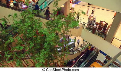 Mall - Usual day in the shopping mall. Time-lapse.