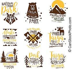mallar, elementara, vildmark, färgrik, promo, serie, ...