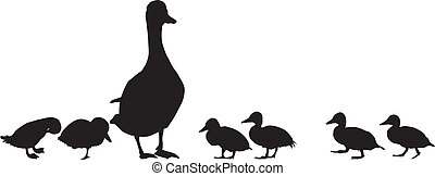Mallard with young - Vector illustration of a family of wild...