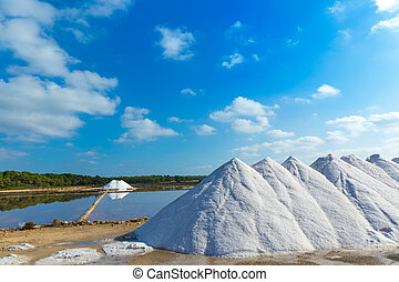 Mallorca Ses Salines Es Trenc Estrenc saltworks in Balearic...