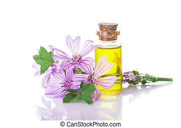 Mallow malva extract - Mallow extrac or essential oil in a ...