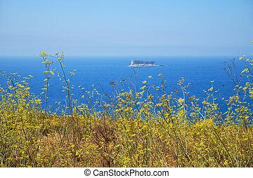 malta, aanzicht, qrendi, voorgrond., kust, deel, filfla, eilandje