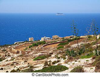 malta, kust, agave, eiland, zuiden, planten