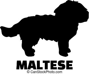 Maltese silhouette black - Maltese silhouette in black and ...