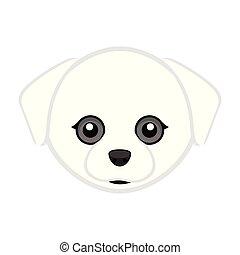 maltesisch, reizend, hund, avatar