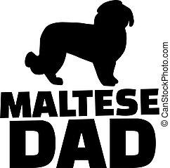 maltesisch, vati, hund