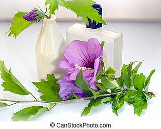 Malva sylvestris, bottles, perfume