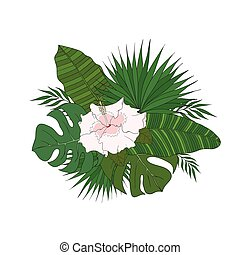 malwa, różny, komplet, flower., liście, drzewa, dłoń, gatunek