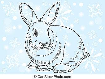 mammal - Monochrome image of a rabbit against blue...