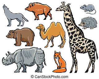 mammals - set of illustrations of mammals
