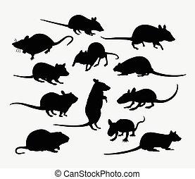 mammifero, ratto, silhouette, animale, topo