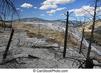 Mammoth Hot Springs in Yellowstone NP