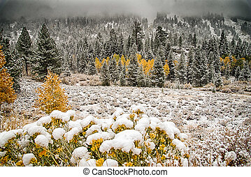 Mammoth Lakes snow in fall