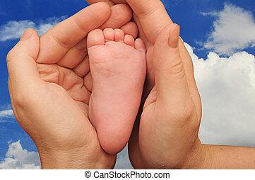 mammy's, gros plan, bébé, nouveau né, mains, pied