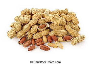 maní, semilla