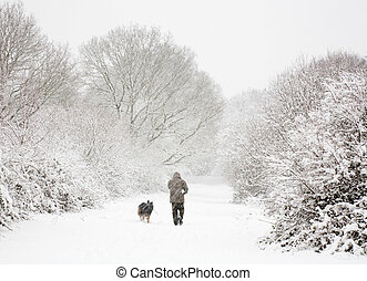 Man and dog in snow - One man walks his dog in snow covered ...