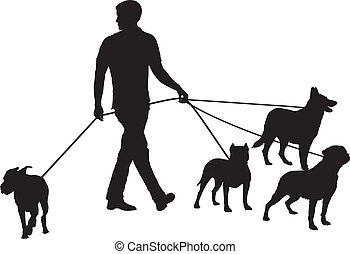 Man and four dogs