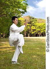 man and kung fu