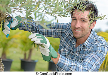 man and plant