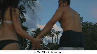 Man And Woman Walking On Beach Holding Hands In Twilight...