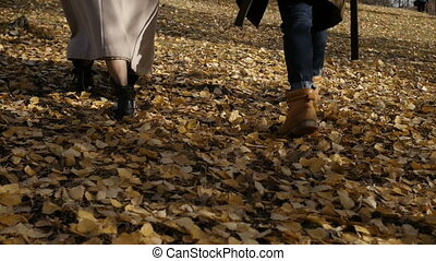 Man and woman walking on leaves