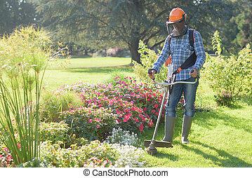 man, användande, a, gräs, trimningsmaskin