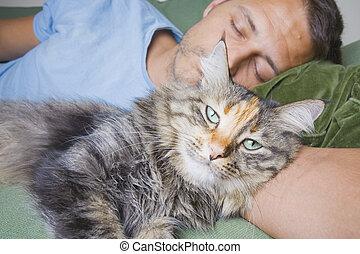 Man Asleep With Cat - A man asleep on his sofa with a cute...