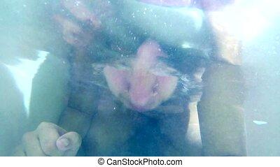 man bathes in bathroom dives funny blue underwater  happy water HD