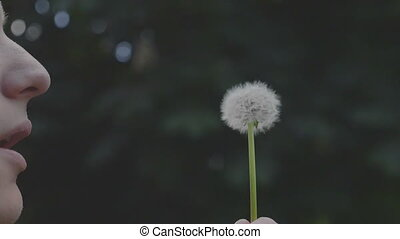 Man blowing on a fluffy dandelion cinemagraph