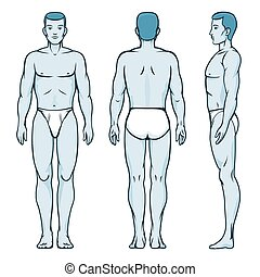 Man body model. Front, back and side human poses. Male human, silhouette anatomy, vector illustration