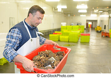 man carrying a crate full of crabs