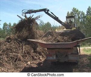 Man controls crane tree