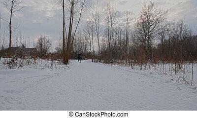 Man cross-country skier over ridge. - Man cross-country...