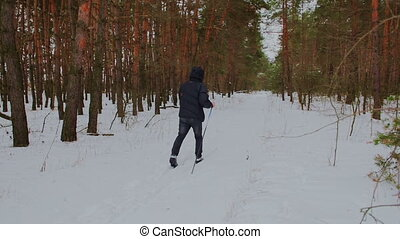 man cross-country skiing in the woods