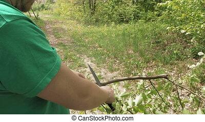 Man cuts saws tree branch in green summer forest - Man cuts...