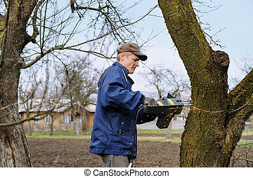 Man cutting a withered tree.