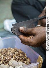 Man cutting betel nuts on the street of Mumbai, India