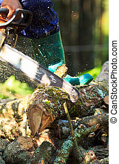man cutting firewood for home with a chainsaw