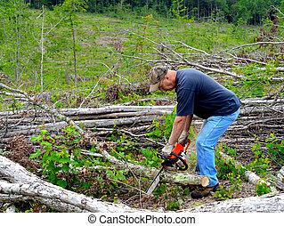 Man cutting firewood