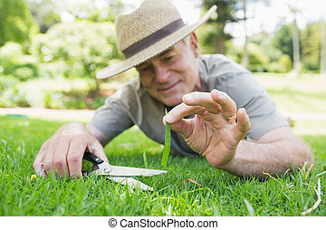 Man cutting grass with scissors - Close-up of a man cutting...