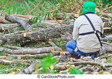 Man cutting piece of wood Cutting wood