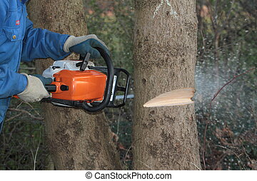 Man cutting tree with chainsaw, close up image