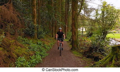 Man cycling on a pathway in forest 4k - High angle view of ...