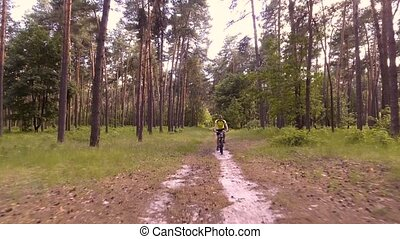 man cyclist rides forest paths - Mountain biking - man with...