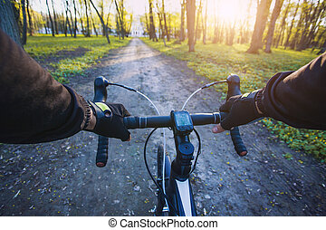 cyclist rides in the forest on a bike.