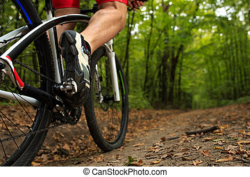 Man Cyclist Riding on bicycle in the Summer Forest