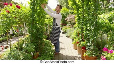 Man doing arch decoration with plants - Horizontal outdoors...